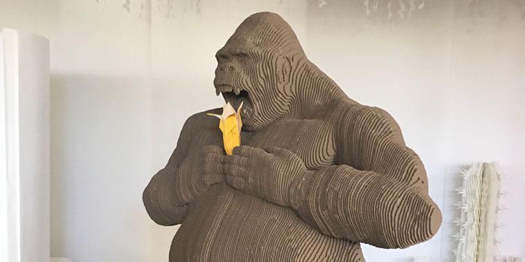 Procédés Chénel gare au gorille