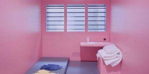 ©A.Stehli-Angélique-Pink-Cells
